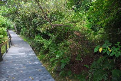 太魯閣台地步道