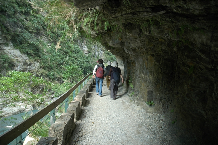 民眾參訪砂卡礑步道