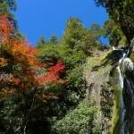 桃山瀑布與楓紅仰角.JPG