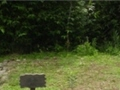 陽管處菁山露營場第五期工程