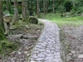 林務局森林遊樂區~滿月圓國家森林遊樂區生態旅遊點