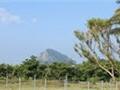 墾丁國家公園~社頂高位珊瑚礁森林旅遊點
