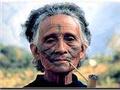 縱野山林的勇者泰雅族