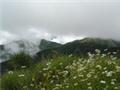 玉山國家公園塔塔加地區步道-「鹿林山-麟趾山」