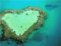 直擊海洋保育永續經營的法則-以世界遺產澳洲大堡礁為標竿