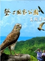 《墾丁國家公園鳥類專輯(DVD)》封面