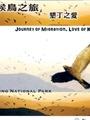 《候鳥之旅,墾丁之愛(DVD)》封面