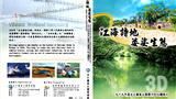 Taijiang : Vibrant Wetland Sanctuary