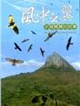 《風中之翼─灰面鵟鷹的故事(DVD)》封面
