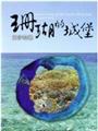《珊瑚的城堡--東沙環礁國家公園(DVD)》封面
