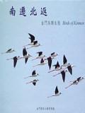 《南遷北返─金門鳥類生態(光碟)》封面
