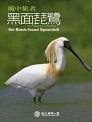 《風中旅者—黑面琵鷺(藍光版)》封面