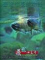 《飛越七家灣(DVD)》封面