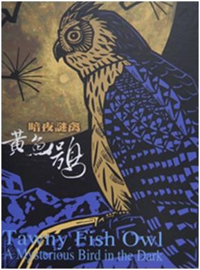 《暗夜謎禽—黃魚鴞 (DVD)》封面