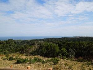 社頂自然公園的休憩與保育