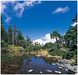幽靜高山上的SironHagai-翠池