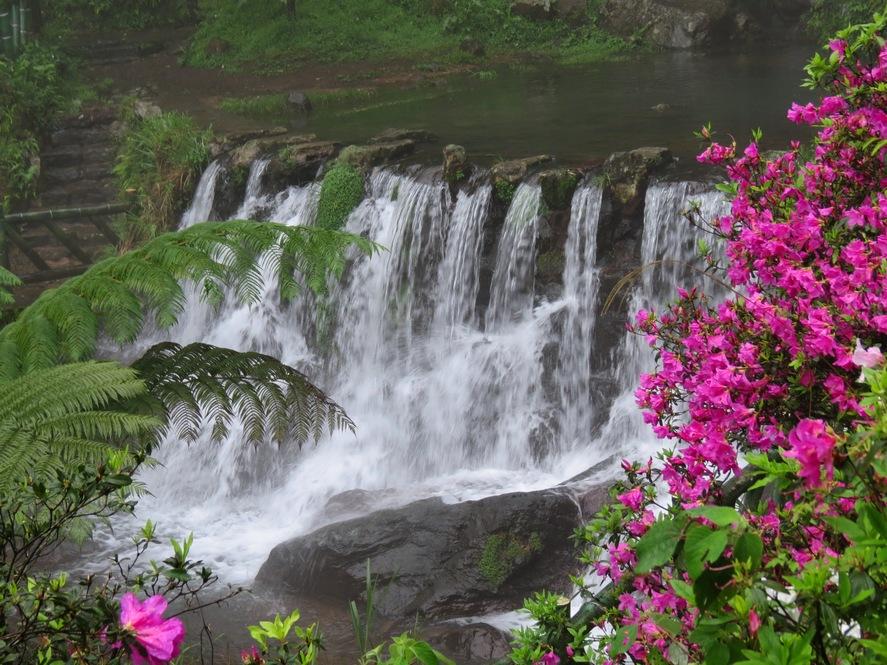 何妨來趟陽明山國家公園溪瀑之旅