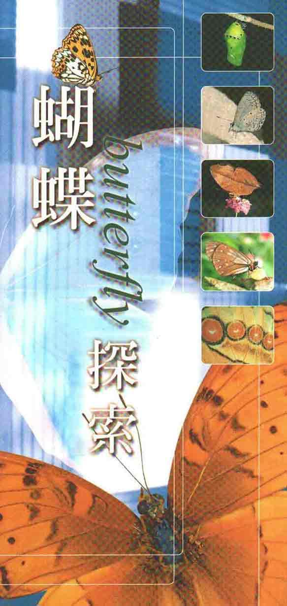 《蝴蝶探索》封面
