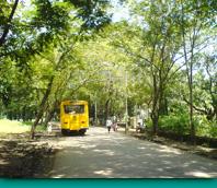 桑賈伊•甘地國家公園