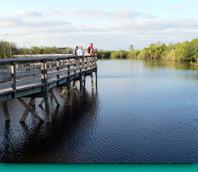 重建 大沼澤國家公園生態溼地