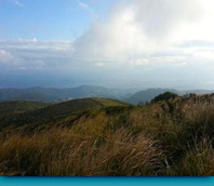 陽明山國家公園:擎天崗遊記圖