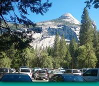 美國國家公園署法規,效力影響知多少?