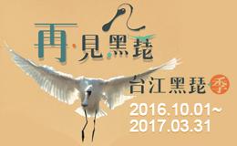 台江黑琵季