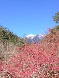 雪霸國家公園武陵之美