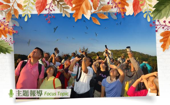 主題報導 主圖:9-10月期間早晨至中午時間,可於社頂公園凌霄亭觀賞「起鷹」奇景(墾丁國家公園管理處提供)