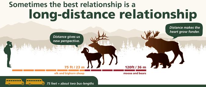 針對所有野生動物,請至少保持75呎(23公尺)或約2臺大巴士車身長度的距離(圖片取自美國國家公園署官網)