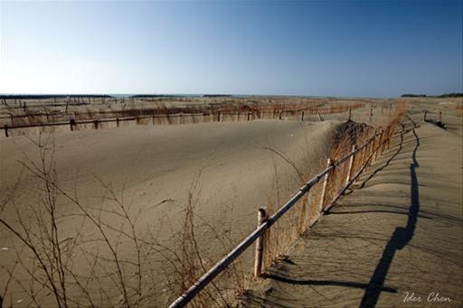 連結大海的沙漠美景--頂頭額沙洲