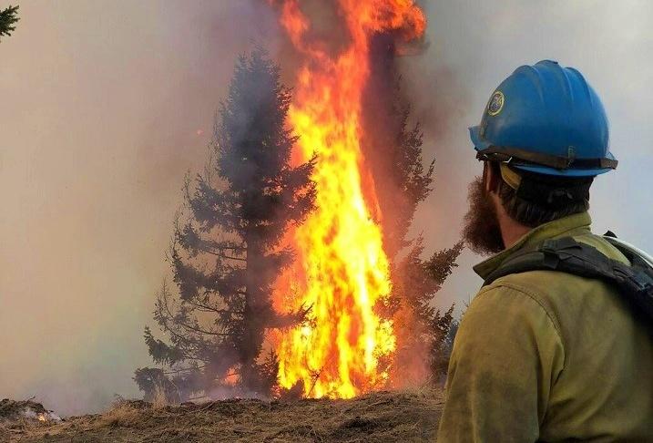 消防員觀看火災