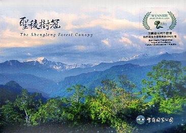 《聖稜樹冠DVD》封面