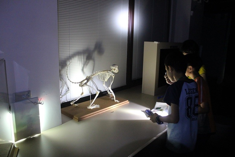 Shoushan National Park Headquarters collaborated with the National Pingtung University of Science and Technology for the first time to bring precious specimens, such as animal droppings and bones