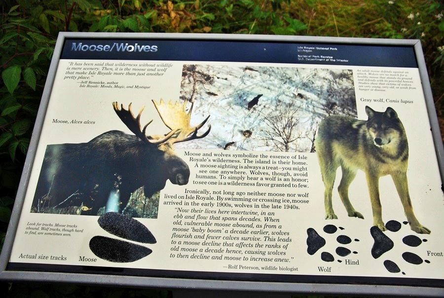 皇家島國家公園的狼和駝鹿告示牌