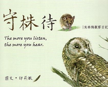 《守株待鼠 - 灰林鴞觀察日記》封面