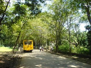 桑賈伊•甘地國家公園:野生孟買的心肺