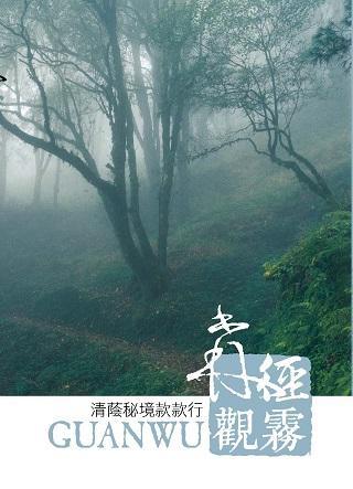 森徑觀霧-清蔭秘境款款行