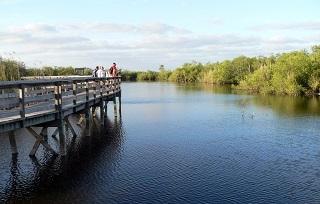 重建 大沼澤國家公園生態濕地