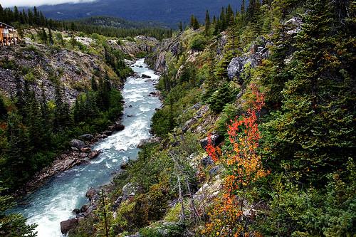 為了保護阿拉斯加河流的原始生態而戰