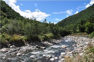 雪霸國家公園境內七家灣溪重要濕地
