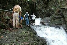 墾丁國家公園秘境-守護里德欖仁溪的保護